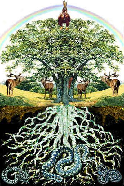 Este árbol